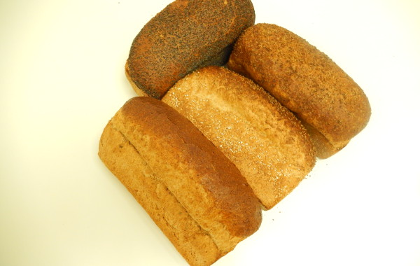 Divers lichtbruin brood